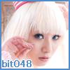 bit048